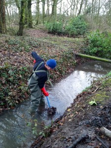 Stream clearing